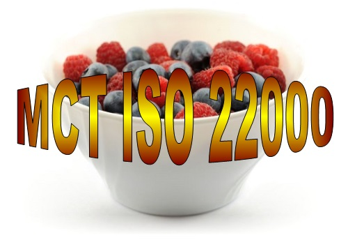 D 20 MCT, quiz and case studies ISO 22000