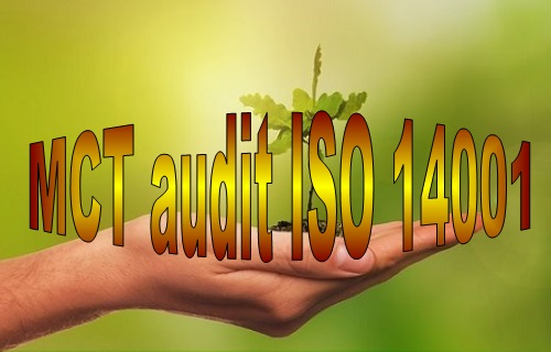 D 37 MCT ISO 14001 internal audit online course