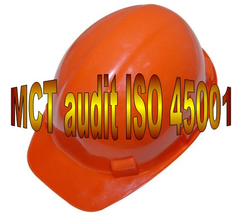 D 38 MCT ISO 45001 internal audit online course