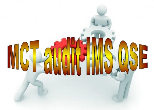 D 39 MCT IMS QSE internal audit online course