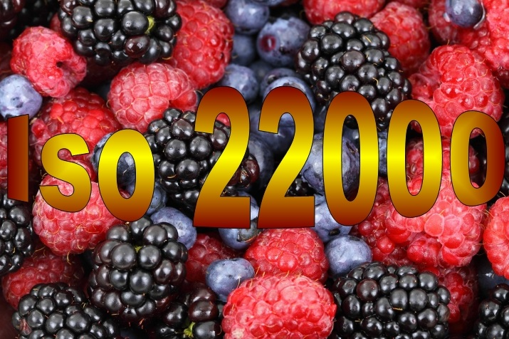 Requirements ISO 22000 version 2018